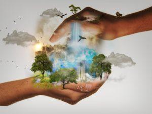 representação de mãos que cuidam da natureza