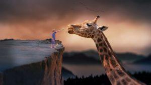 menino na beira de um abismo alimentando uma girafa